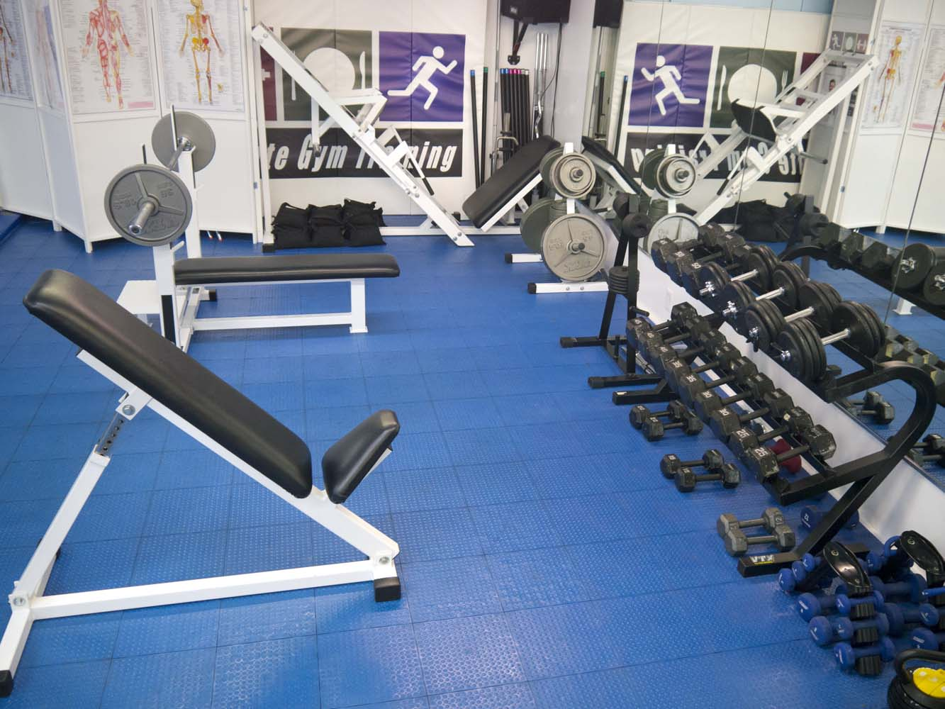 Gym - Freeweights Area